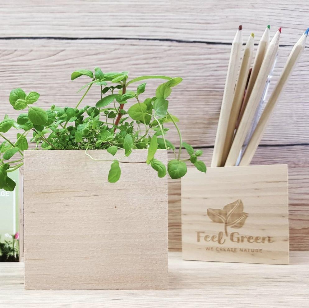 Objets Design - Feel Green - Concept Store - Babette